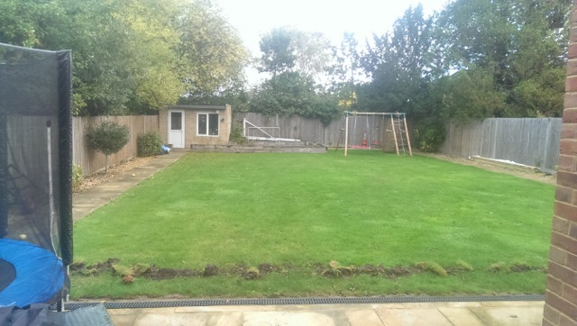 Artificial Grass Wimbledon